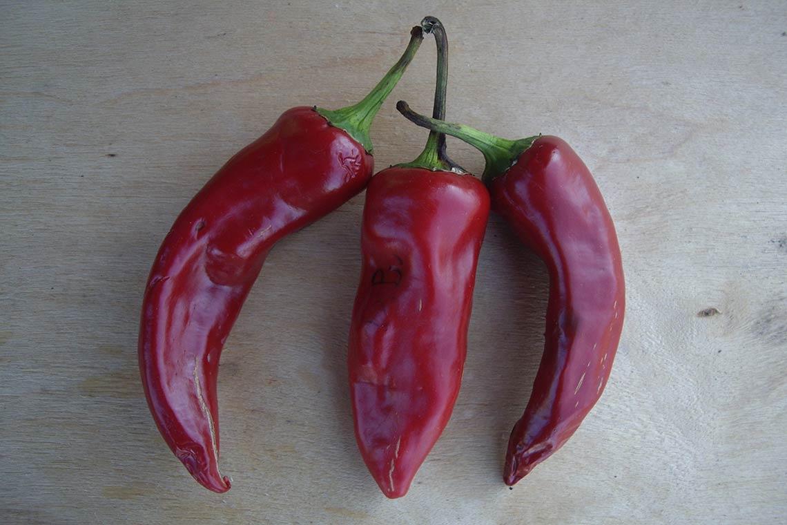 Перец сладкий «Смесь 3 сортов»