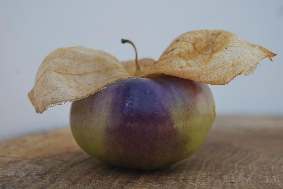 Физалис гигант яблочный