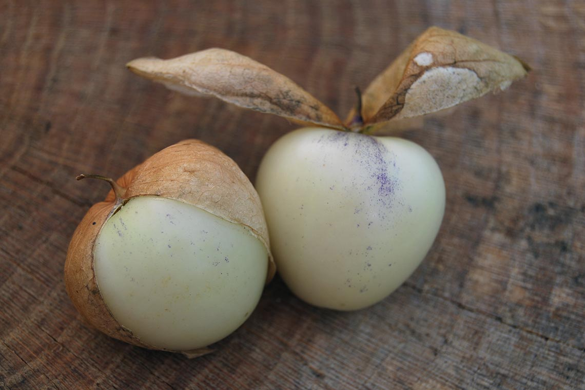 Физалис овощной белый