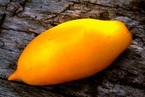 Томат Сосулька жёлтая