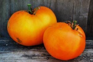 Томат Воловье сердце оранжевое