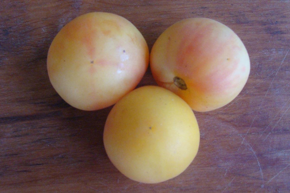 Томат Персик жёлтый