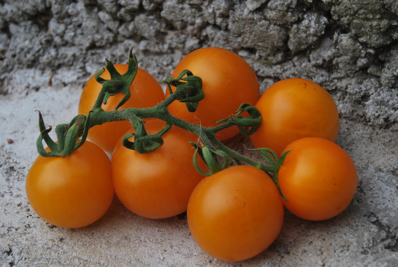 желтый томат картинки респект всем
