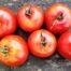 Томат Бабушкин красный салат