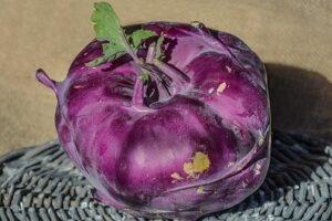 Капуста Кольраби фиолетовая
