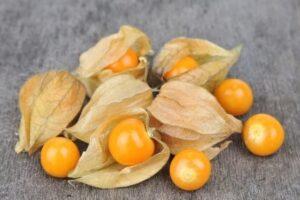 Физалис ягодный Изюмчик