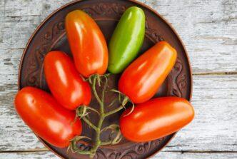 Фляшен томат
