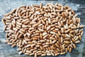 Фасоль зерновая Капучино