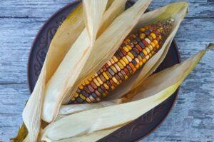 Кукуруза Земляных тонов